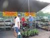 photo-sep-10-11-07-05-am