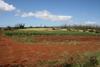 Freeman Farm - Scenic