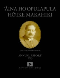 2013 DHHL Annual Report