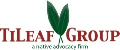 TiLeaf Group Logo
