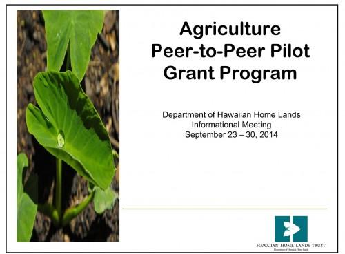 Ag-Peer-To-Peer-Grant-Powerpoint