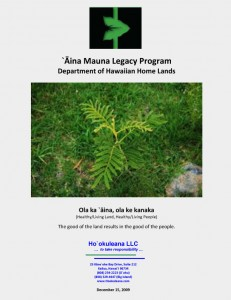 Aina Mauna report cover